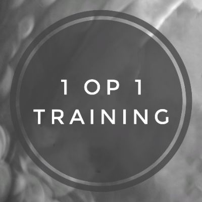 1 op 1 training